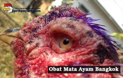 Inilah 3 Obat Mata Ayam Bangkok Yang Disebabkan Mata Merah, Luka Pukulan dan Cacingan