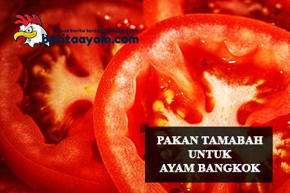 Inikah-Pakan-Tambahan-Ayam-Bangkok-Yang-Berguna-Untuk-Antioksidan