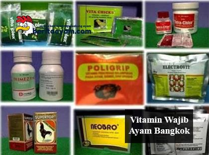 Vitamin Wajib Ayam Bangkok